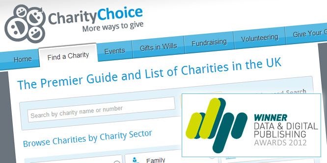 Charity Choice Website wins DDP Award